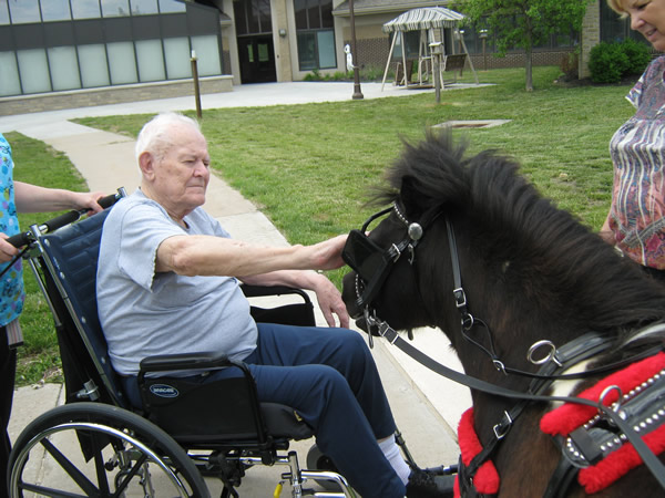 Veteran at Cameron Veterans Home petting a horse